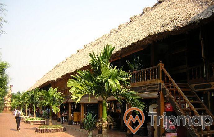 quán bar nhà sàn khu du lịch thác đa, quán bar mái cọ và có cầu thang gỗ, hàng cây cau cạnh quán và 1 người phụ nữ đeo túi xách đang đi bộ, ảnh chụp dưới trời nắng ngoài trời