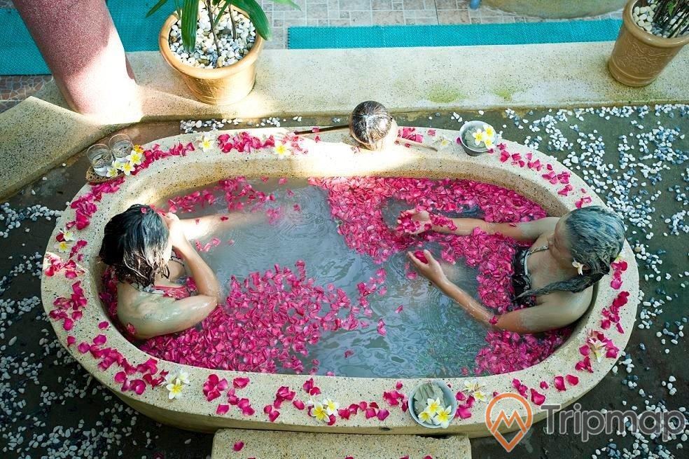 2 người đang tắm trong bồn nước đầy cánh hoa hồng, có 2 chậu cây cạnh bồn tắm