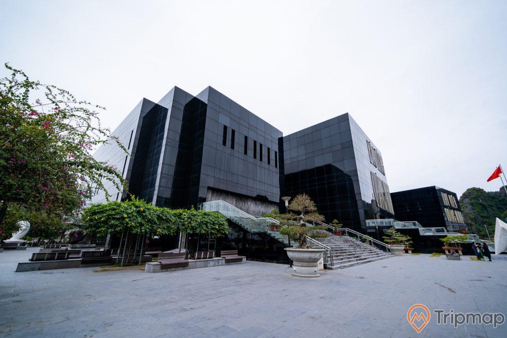 Bảo tàng Quảng Ninh, nền đường màu xám, bậc thang màu xám, nhiều chậu cây, ảnh chụp ban ngày