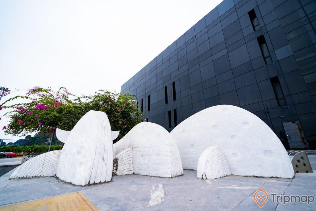 Bảo tàng Quảng Ninh, tượng cá voi màu trắng, nền gạch bằng đá màu xám, cây hoa giấy, tòa nhà màu đen, ảnh chụp ban ngày