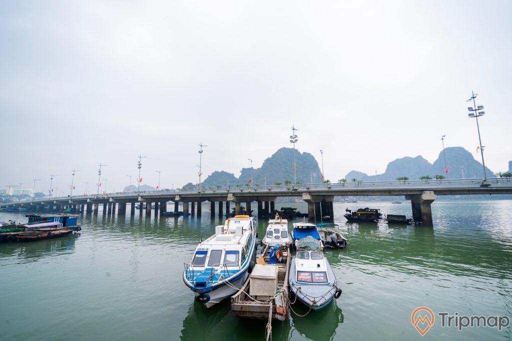 Cầu Bài Thơ, nhiều thuyền màu trắng đỗ trên mặt nước, nhiều ngọn núi đá có cây xanh phía xa, ảnh chụp ban ngày