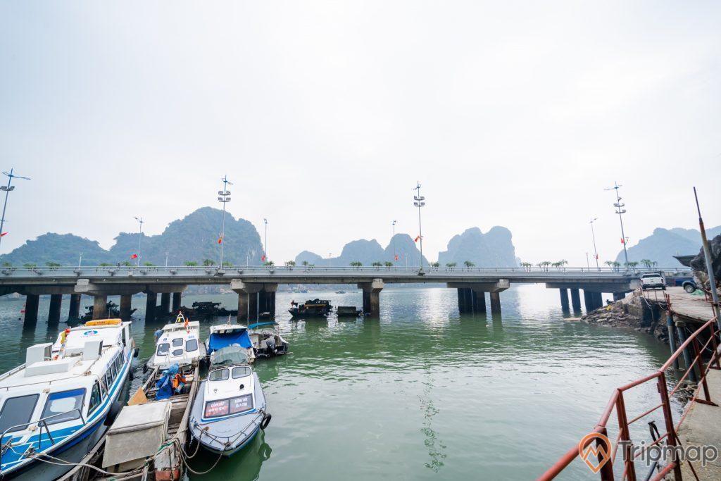 Cầu Bài Thơ, nhiều thuyền đang đỗ trên biển, mặt nước màu xanh, nhiều ngọn núi đá có cây xanh phía xa, ảnh chụp ban ngày