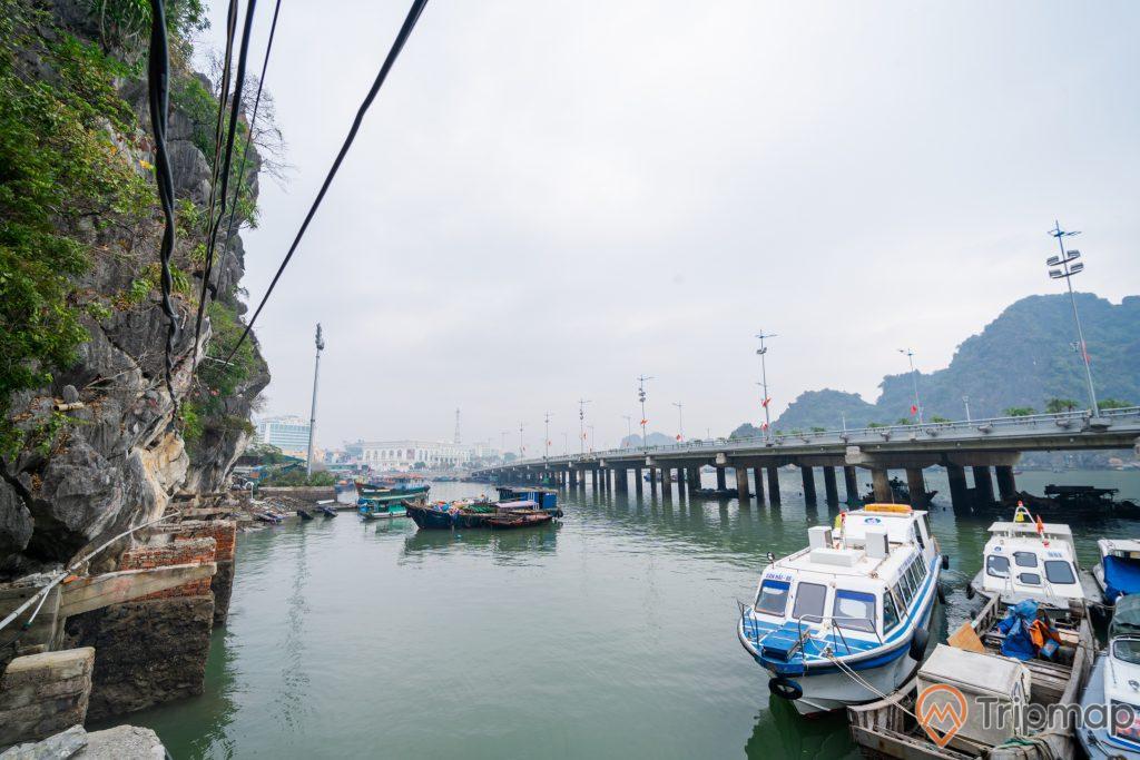 Cầu Bài Thơ, nhiều thuyền đang đỗ trên mặt nước, nước biển màu xanh, ngọn núi đá màu xám có cây xanh, nhiều ngọn núi phía xa, ảnh chụp ban ngày