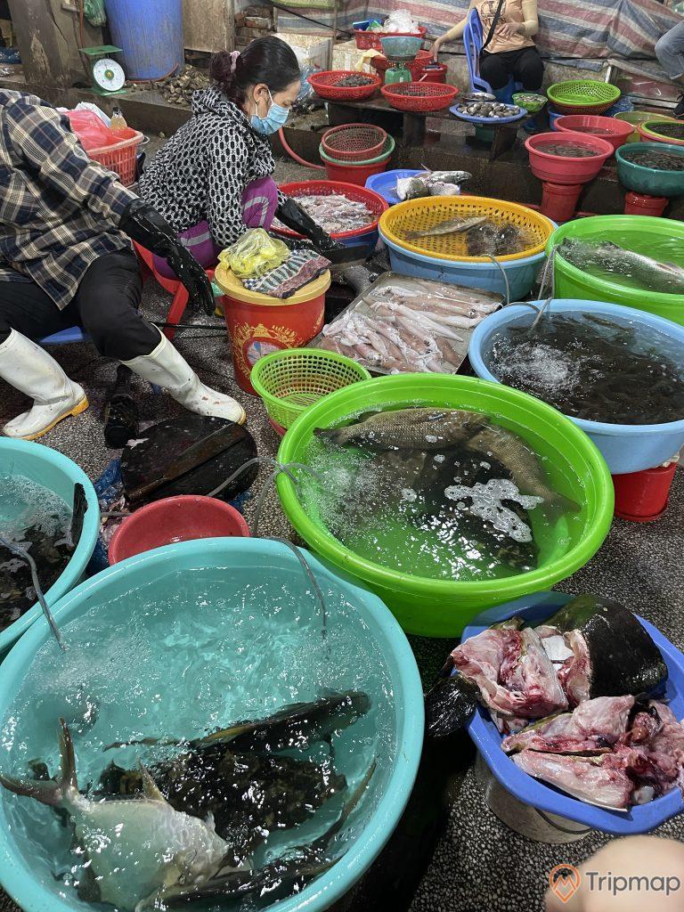 Hải sản tươi sống tại chợ Hạ Long 2 - Chợ Loong Tòong