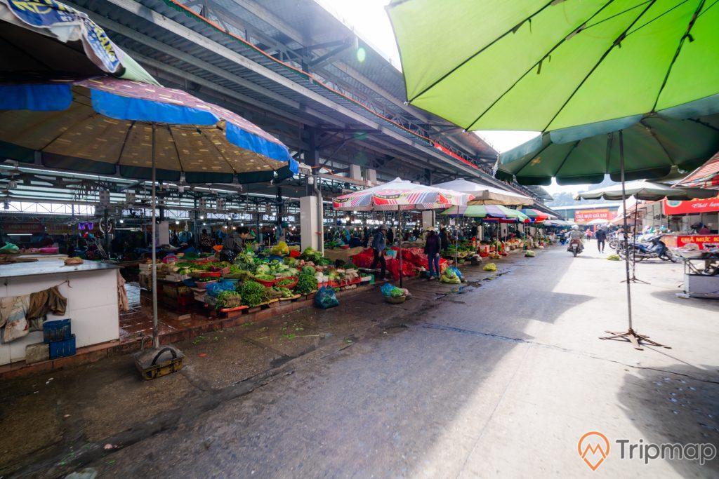 Chợ Hạ Long, Chợ Hòn Gai, nền đường màu xám, quầy bán rau củ, nhiều ô to màu xanh, trời nắng, ảnh chụp ban ngày