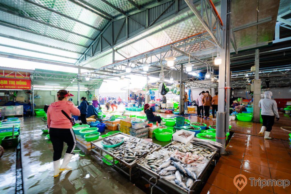 Chợ Hạ Long, Chợ Hòn Gai, nền đất màu xám bị ướt, nền gạch màu đỏ bị ướt, nhiều chậu đựng cá, người phụ nữ đeo ủng màu trắng, ảnh chụp ban ngày