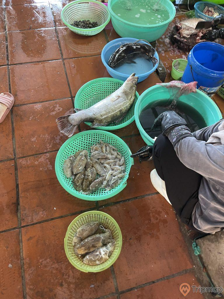 Tiểu thương bán cá và mực tươi tại chợ Hạ Long