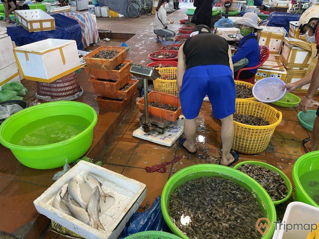 Tiểu tương bày bán hải sản tươi sống tại chợ Hạ Long