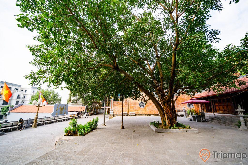 Đền thờ Đức Ông Trần Quốc Nghiễn, cây xanh, nền đường màu xám, bức tường bằng gạch màu đỏ, ảnh chụp ban ngày