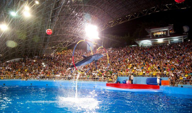 Sân khấu biểu diễn cá heo Tuần Châu