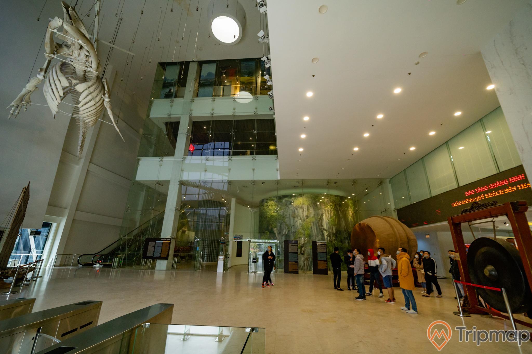Bảo tàng Quảng Ninh, biển cả và tự nhiên, xương cá voi, nền nhà màu vàng, nhiều người đang đứng trên nền nhà màu vàng, trần nhà màu trắng, ảnh chụp ban ngày