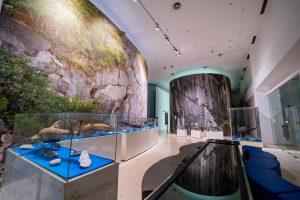 Bảo tàng Quảng Ninh, biển cả và tự nhiên, mô hình cá heo, nền gạch màu nâu nhạt, tủ kính, trần nhà màu trắng