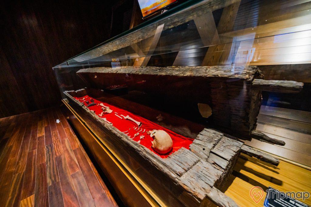 Bảo tàng Quảng Ninh, nơi lưu giữ những giá trị lịch sử, bộ hài cốt đặt trên tấm thảm màu đỏ, bộ hài cốt được đặt trong tủ kính, nền nhà bằng gỗ màu nâu