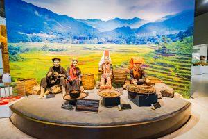 Khu tái hiện lịch sử hình thành mỏ than, bảo tàng Quảng Ninh, mô hình người dân tộc vùng núi, bảng giới thiệu màu đen, bức tranh hình ruộng bậc thang, nhiều loại cây vùng núi