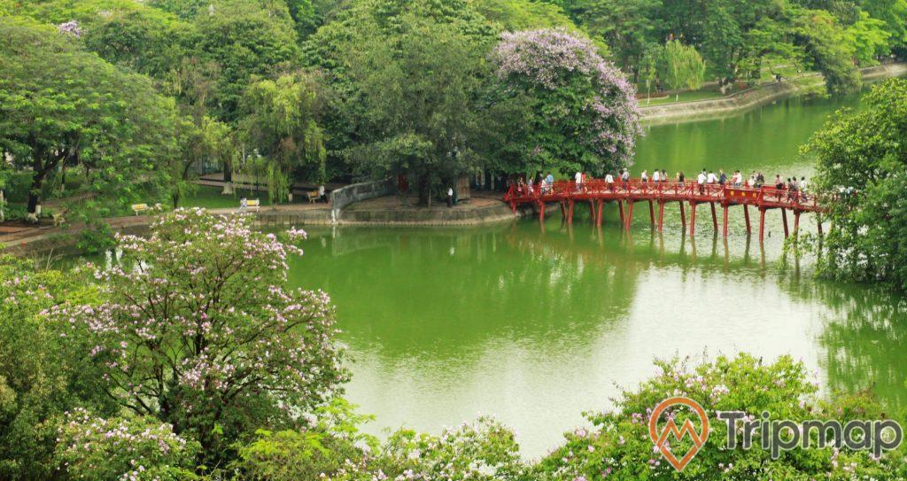 Cầu Thê Húc nối với đền Ngọc Sơn bao quanh cây cối um tùm