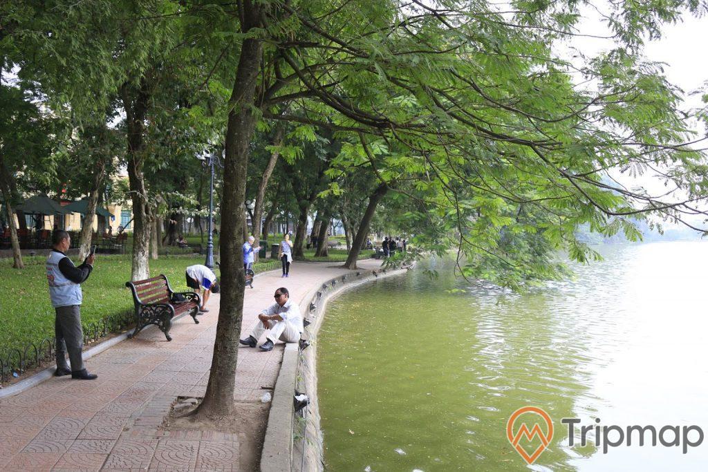 một người ngồi bên bờ hồ, cây xanh