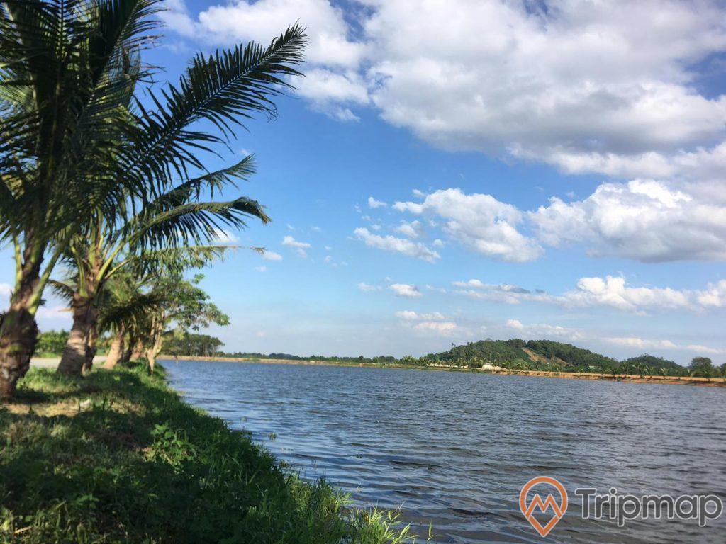 ảnh chụp bên bờ hồ 2 cây dừa và hàng cây dừa, núi đồi và bầu trời xanh có mây trắng tại khu du lịch suối khoáng Tản Đà