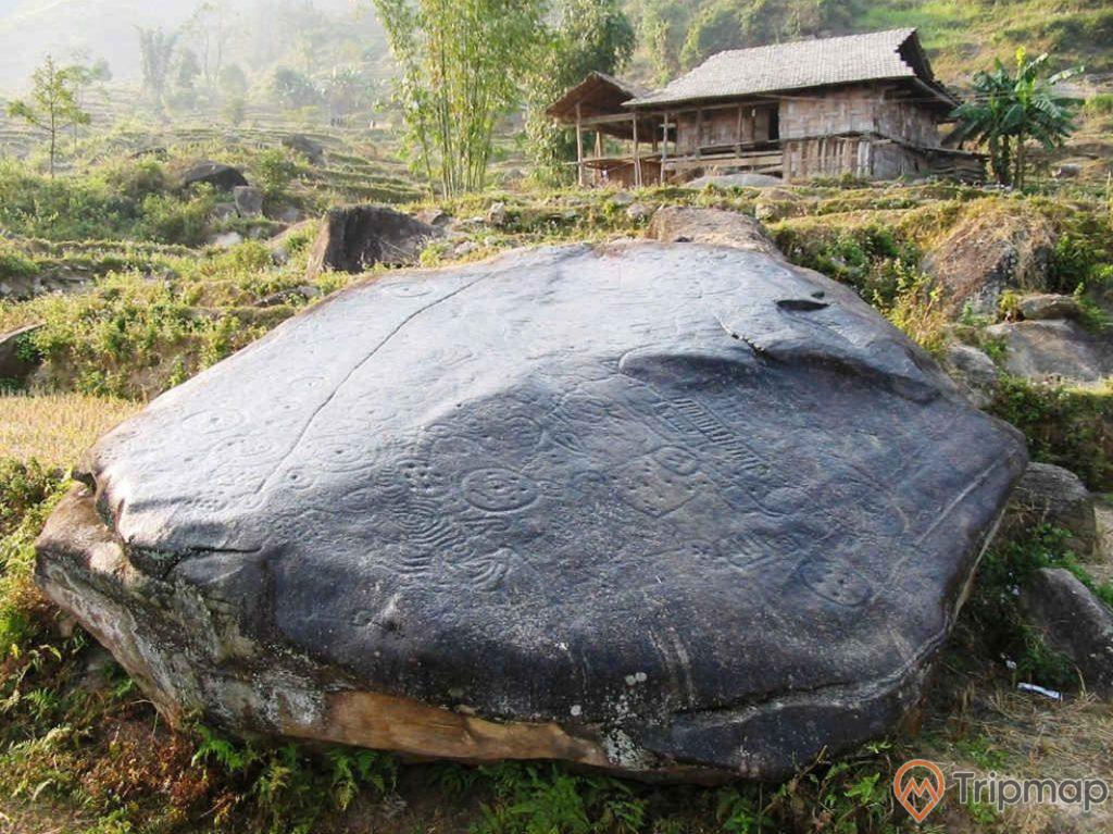 Phiến đá lớn có hình vẽ cổ tại bãi đá cổ Nấm Dẩn, cỏ cây mọc xung quanh phiến đá, ngôi nhà sàn phía trên, ảnh chụp ngoài trời