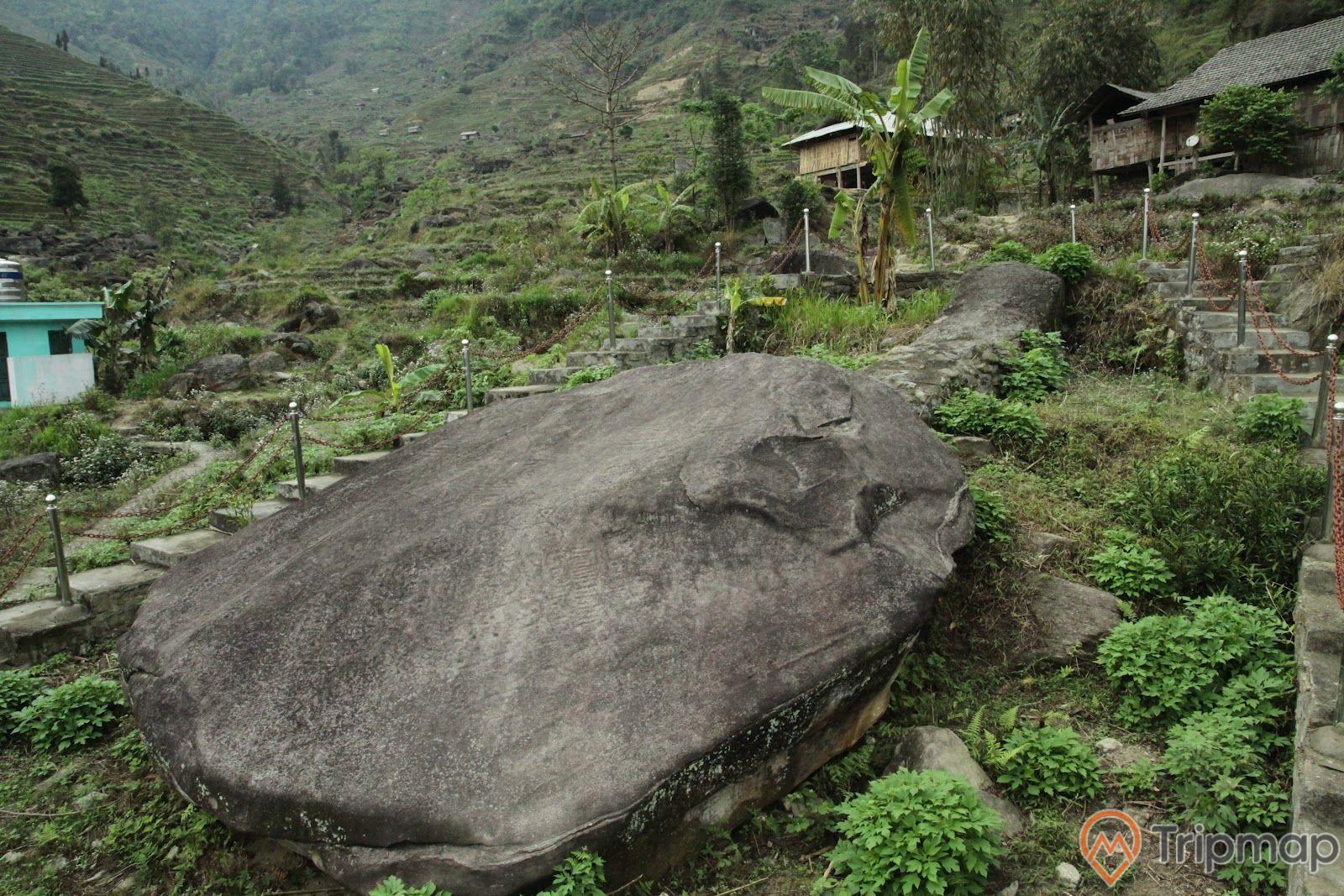 Phiến đá được bảo tồn tại khu di tích bãi đá cổ Nấm Dẩn, cỏ cây xanh tươi quanh phiến đá cổ, ngôi nhà sàn phía trên ảnh chụp ngoài trời