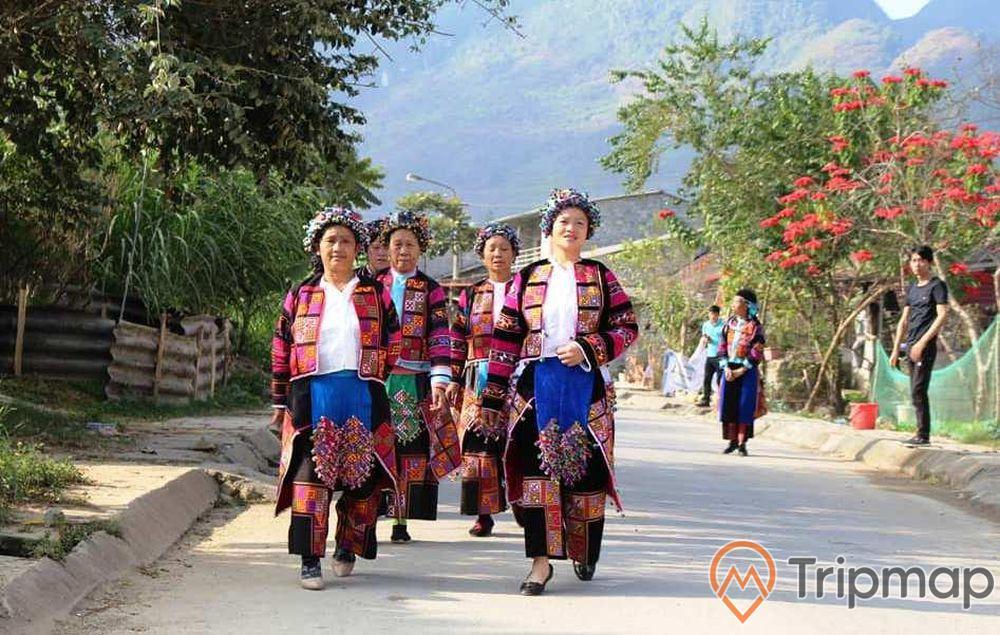người dân đi bộ tại cao nguyên Đồng Văn, mọi người đang đi bộ trên đường, cây cối xanh tươi, ảnh chụp ngoài trời
