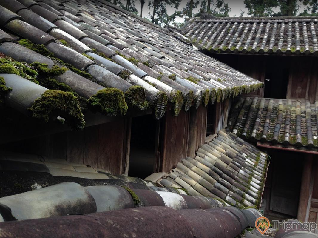 Mái ngói kiến trúc cổ tại dinh thự họ Vương, mái ngói xỉn màu mọc trêu xanh, ảnh chụp dưới mái hiên tầng 2 của dinh thự
