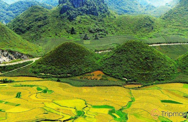 Thiên nhiên nơi thắng cảnh núi đôi Quản Bạ, núi đồi cây cối xanh tươi và ruộng bậc thang, ảnh chụp trên cao