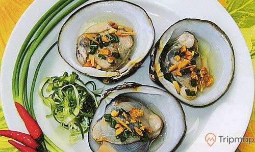Ngán biển là một món ăn phổ biến và đặc trưng mà du khách nên thử khi đến Bãi Dài