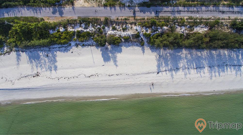 Bãi Rùa, mặt nước biển màu xanh, bờ cát trắng trải dài, nhiều cây xanh, trời nắng, ảnh chụp ban ngày, ảnh chụp từ trên cao