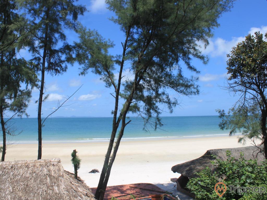 Bãi tắm Minh Châu, bờ cát trắng trải dài, nước biển màu xanh, nhiều cây xanh, trời nắng, ảnh chụp ban ngày