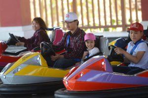 Bò sát đụng độ, du khách đang trải nghiệm trò chơi, cậu bé mặc áo trắng đang lái xe màu tím, người đàn ông với em bé đang lái xe màu vàng