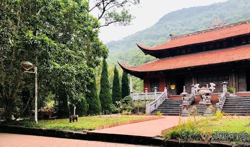 Xung quanh khuôn viên của chùa được trồng nhiều cây xanh