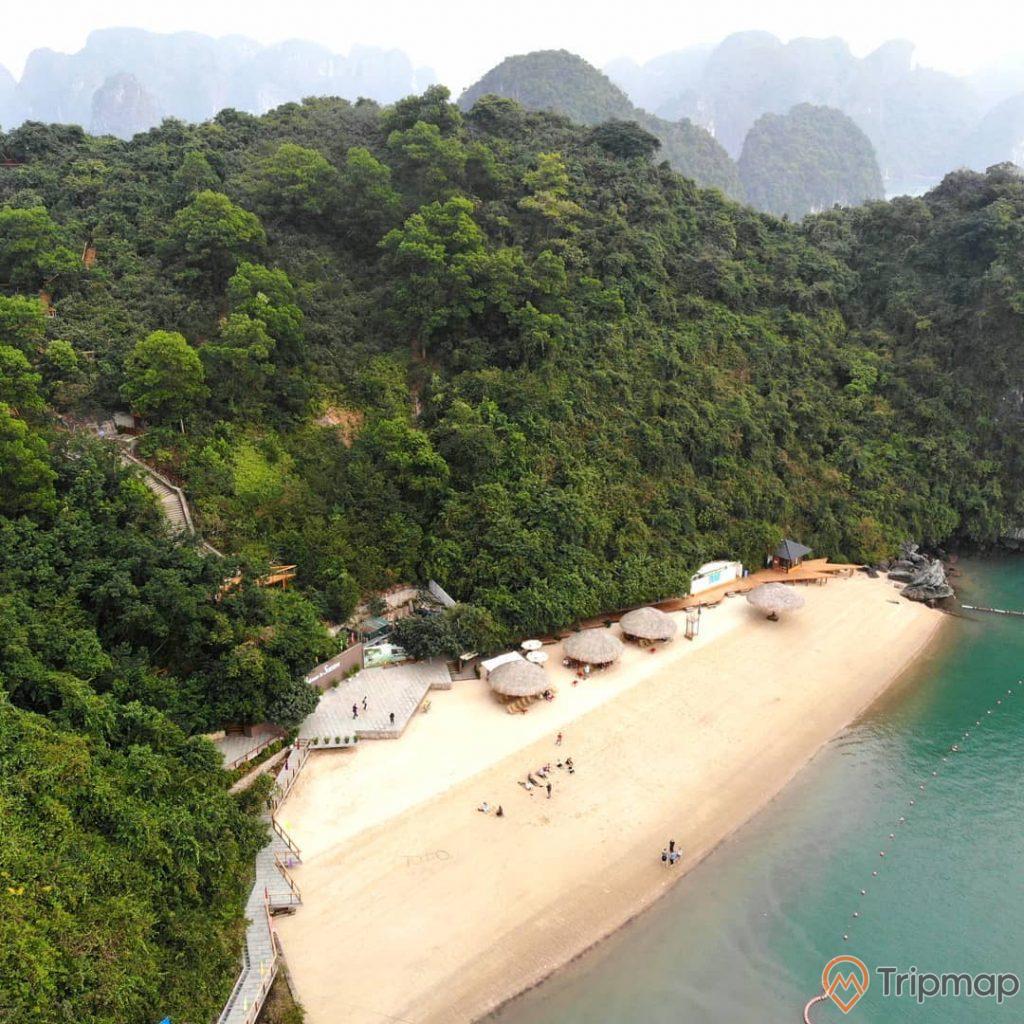 Bãi tắm Soi Sim, Đảo Soi Sim, nhiều cây xanh, bờ cát trắng, mặt nước biển màu xanh, ảnh chụp từ trên cao, ảnh chụp ban ngày