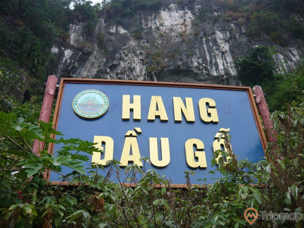 Biển hiệu tại cổng vào hang Đầu Gỗ