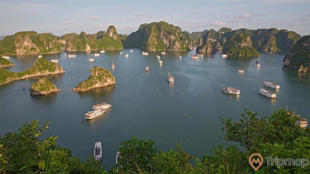 Ngắm thiên nhiên tươi đẹp trên Vịnh Hạ Long