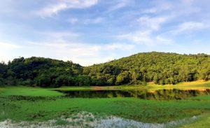 Hồ nước ngọt trên đảo Ngọc Vừng