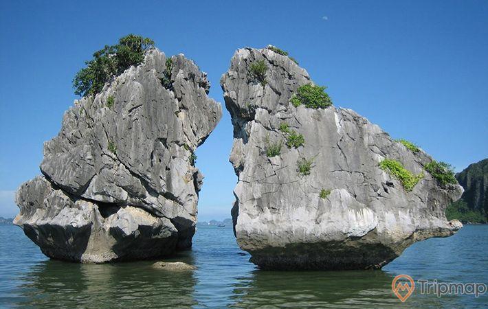 Hòn Trống Mái, vịnh Hạ Long, tảng đá to màu xám có cây xanh, ảnh chụp ban ngày