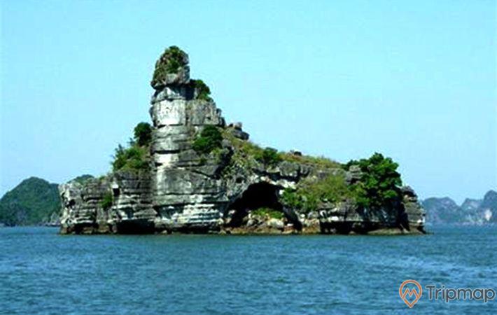 Hòn Xếp, vịnh Hạ Long, tảng đá to màu xám có nhiều cây xanh, mặt nước biển màu xanh, ảnh chụp ban ngày