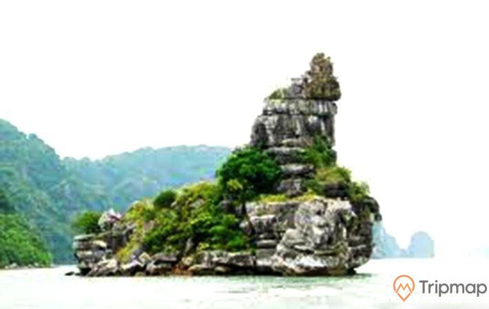 Hòn Xếp, vịnh Hạ Long, tảng đá màu xám có cây xanh, ngọn núi ở phía xa, ảnh chụp ban ngày