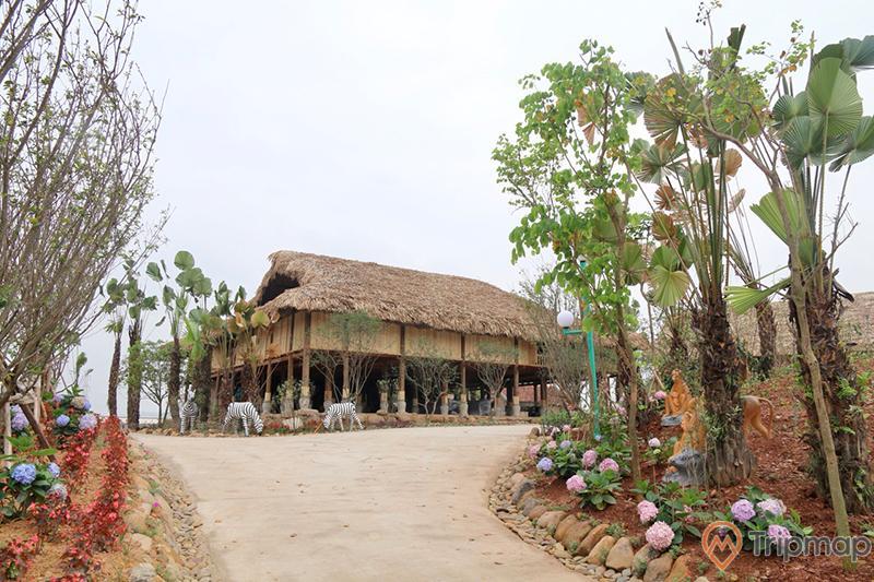 Khu nhà Trung du Bắc Bộ, Quảng Ninh Gate, nhà sàn, con đường đi màu xám, nhiều cây xanh, mô hình ngựa vằn, ảnh chụp ban ngày