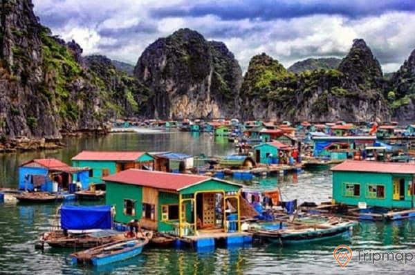 Làng chài Cửa Vạn, nhiều nhà dân trên biển, nhiều thuyền trên biển, mặt nước biển màu xanh, nhiều ngọn núi đá to có cây xanh, ảnh chụp ban ngày, trời xanh