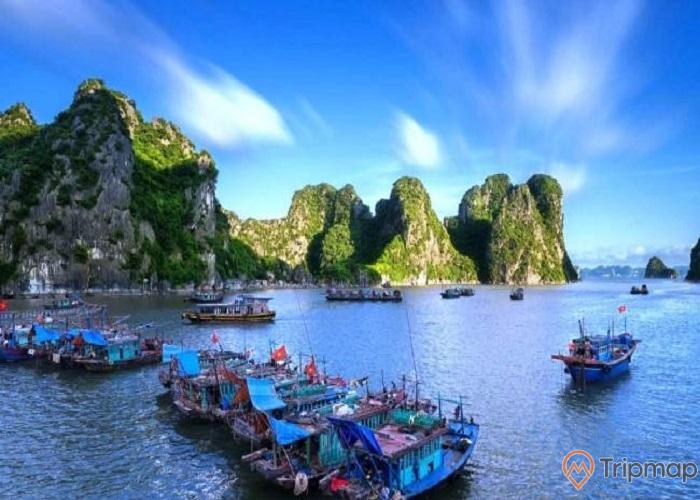 Làng chài Vung Viêng, nhiều thuyền trên biển, mặt nước biển màu xanh, nhiều ngọn núi đá màu xám có cây xanh, trời xanh, ảnh chụp ban ngày