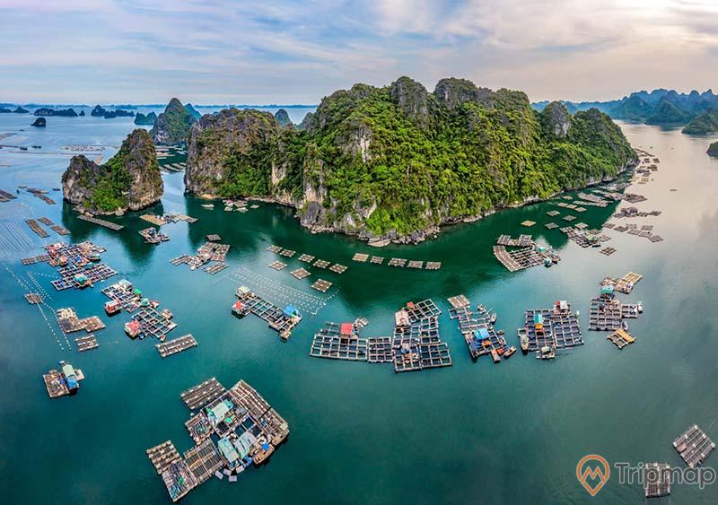 Làng chài Vung Viêng, vịnh Hạ Long, nhiều nhà dân trên biển, mặt nước biển màu xanh, ngọn núi đá có cây xanh, trời xanh, nhiều mây, ảnh chụp từ trên cao, ảnh chụp ban ngày