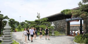 Nhà Bonsai