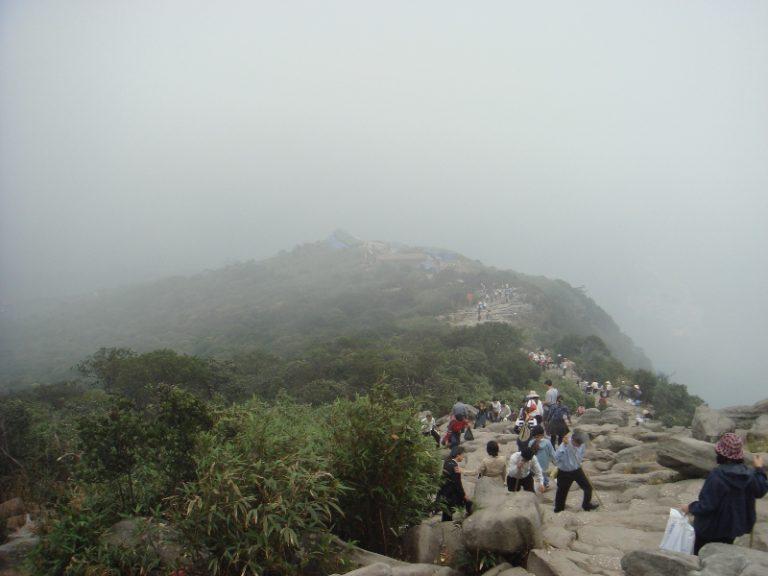 Rừng Trúc - Yên Tử