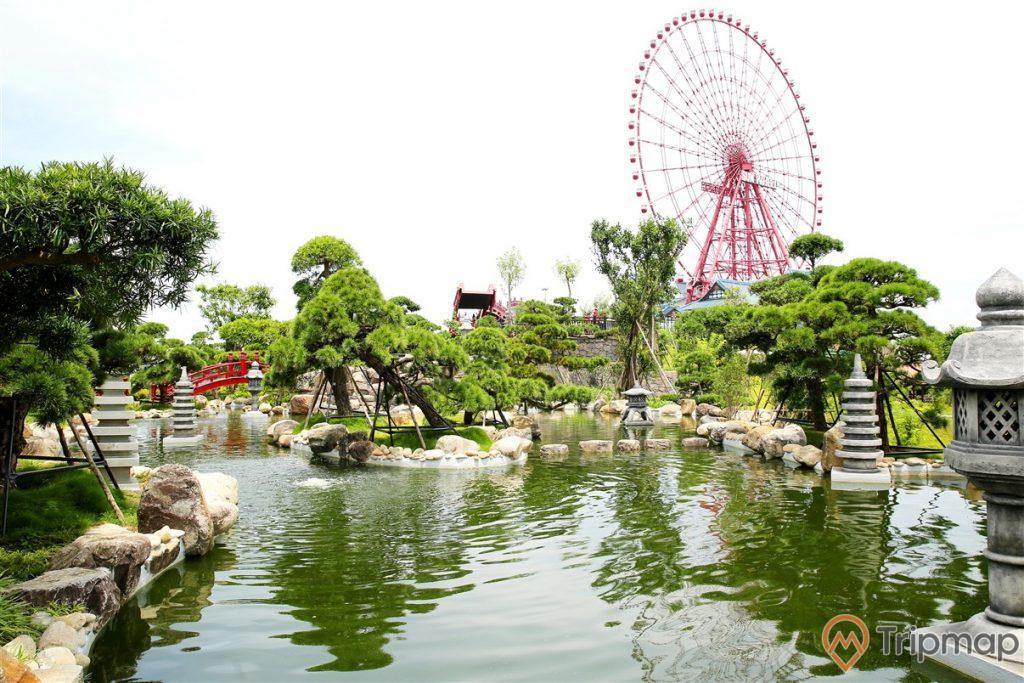 Vườn Nhật Bản Zen Garden, hồ nuôi cá Koi, nhiều cây xanh, vòng quay mặt trời ở phía xa, ảnh chụp ban ngày