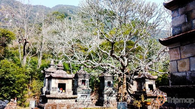 Vườn tháp Huệ Quang- nơi an nghỉ của các Thiền tăng phái Trúc Lâm