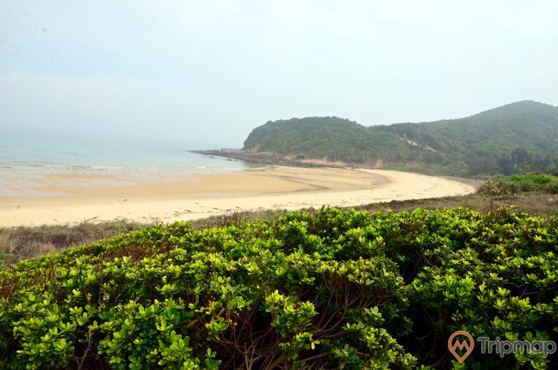 Bãi biển Ba Châu được bao bọc bởi cánh rừng nguyên sinh
