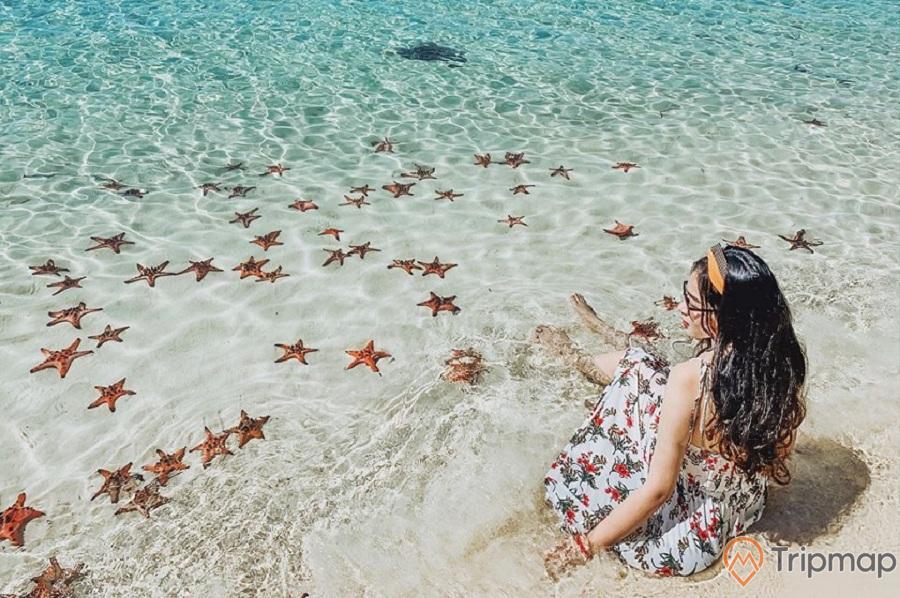 Bãi biển Hồng Vàn