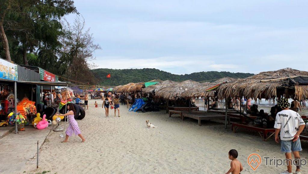 Hoạt động vui chơi tại bãi biển Vàn Chảy, ảnh chụp ngoài trời, cây cối xanh tươi gần bãi biển, hàng nán cọ che nắng, mọi người đang đi trên bãi biển, bầu trời nhiều mây