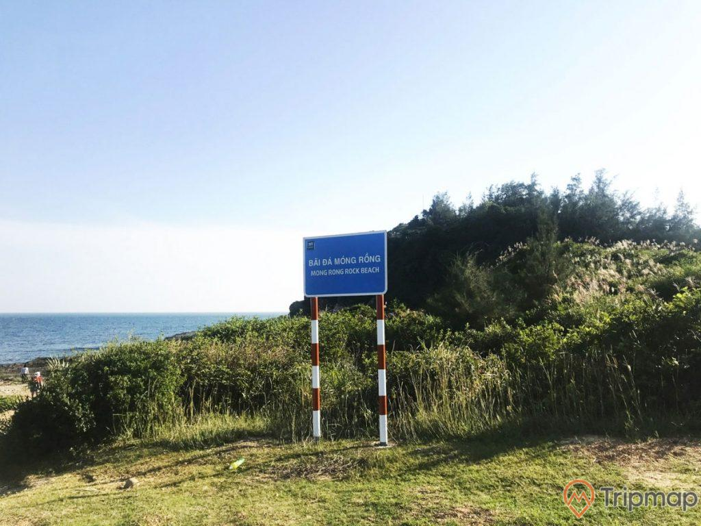 """bãi đá cầu mỵ (bãi đá móng rồng), biển chỉ dẫn màu xanh chữ màu trắng """"bãi đá Móng Rồng Mong Rong rock beach"""", bầu trời trong xanh, cây cối xanh tươi sau tấm biển, ảnh chụp ngoài trời"""